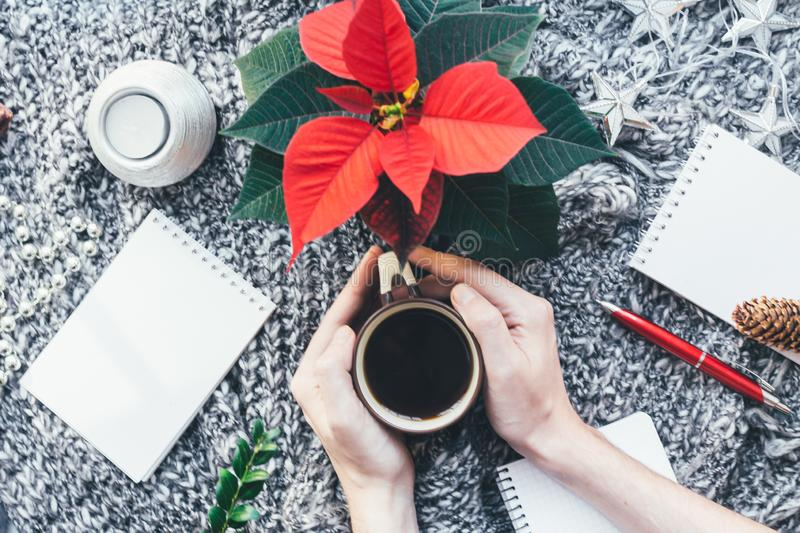 Christmas closeup mockup with cup of coffee poinsettia and hands with copy place. Cozy background royalty free stock photo