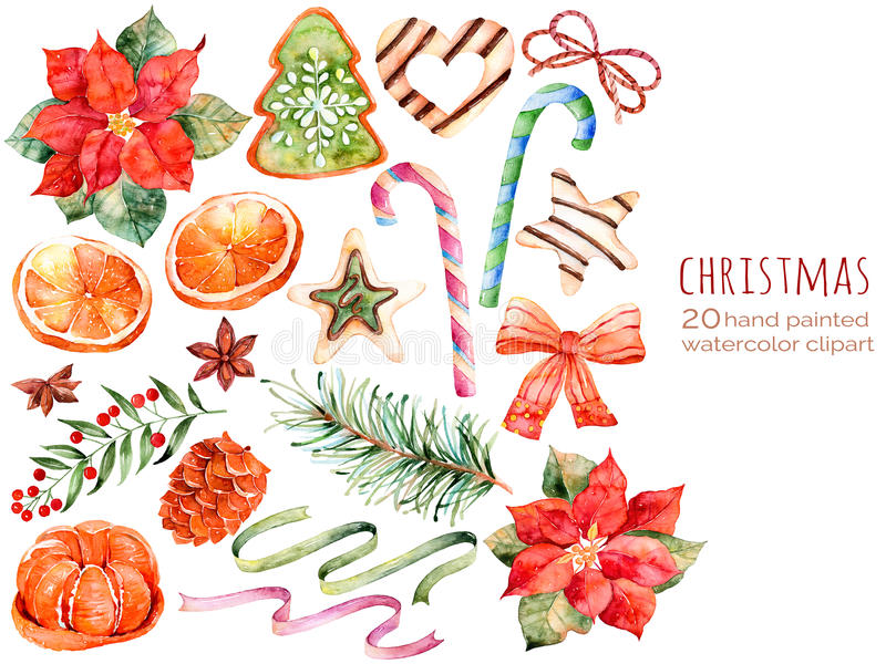 Christmas collection:sweets,poinsettia,anise,orange,pine cone,ribbons,christmas cakes vector illustration