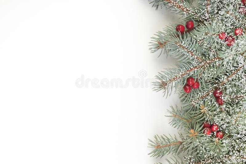 Christmas composition of fir branches and berries of viburnum on a white background isolated. Top view with copy space. royalty free stock photos