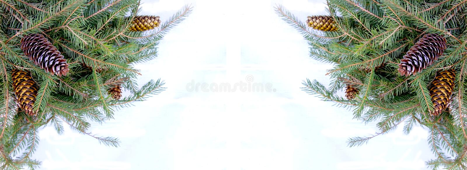 Christmas composition with fir tree branches and cones on white background. New Year festive design template. Symmetrical banner stock photos
