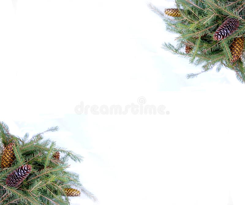 Christmas composition with fir tree branches and cones on white background. New Year festive design template. Symmetrical banner stock images