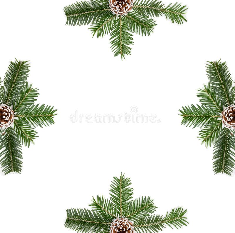 Christmas composition, frame with fir tree branches, pine cones on white background royalty free stock photo