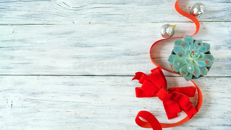 Christmas composition, mockup with green cactus aloe succulent plant stock photos