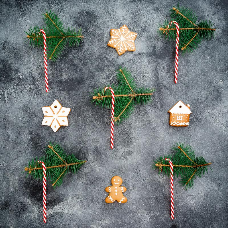 Christmas concept. Gingerbread, candy cane and winter plants on dark background. New year composition. Flat lay. Top view royalty free stock photo