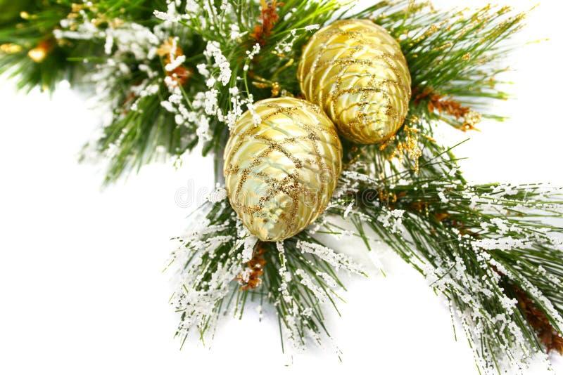 Christmas cones stock photos