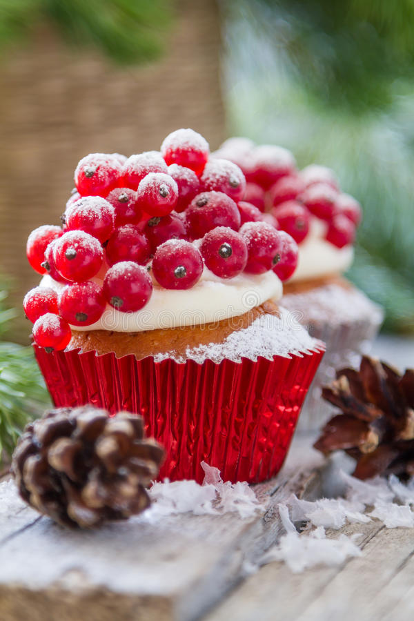 Christmas cupcake. With red berries, rustic wood background royalty free stock images