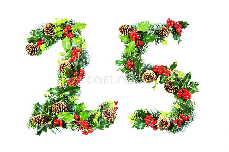 Christmas Day 25 in Holly. The numerals 25 for Christmas day in natural holly with red berries, cones and spring foliage of cypresses with vivid green new growth royalty free stock images
