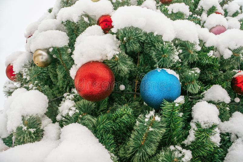 Christmas decor Christmas tree under the snow on the street. Big red and blue balls on the branch. Selective focus royalty free stock image