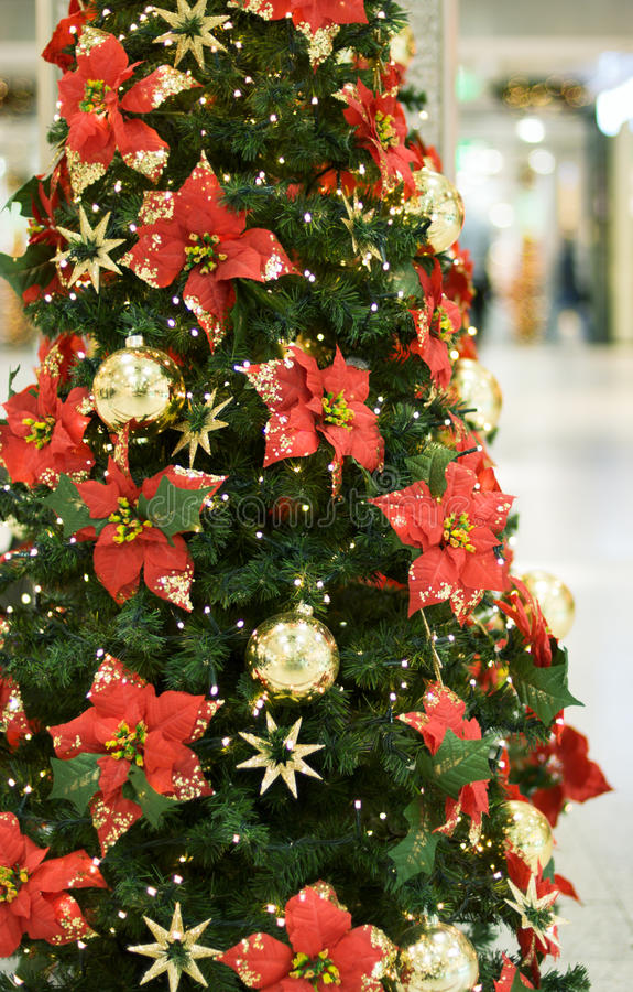 Free Christmas Decoration Royalty Free Stock Photography - 12136207