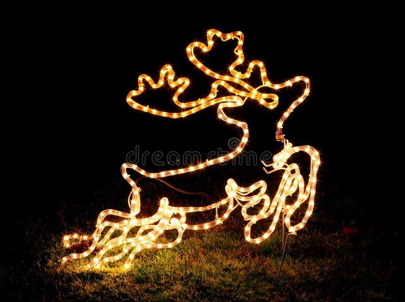 Christmas decoration. Light: a deer stock image