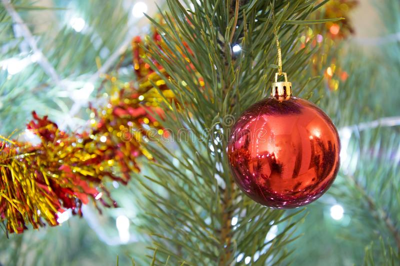 Christmas decoration background. Closeup of red glass ball and spangle on decorated pine tree royalty free stock image