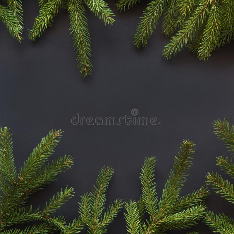 Christmas decoration background. Fir tree branches on black background with copy space. Top view. Pattern. Christmas or New Year decoration background. Fir tree royalty free stock photos