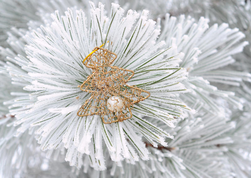 Download Christmas Decoration On Fir Tree Stock Image - Image: 27600079