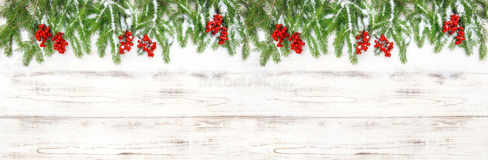 Christmas decoration Floral holidays banner Evergreen tree branches stock images