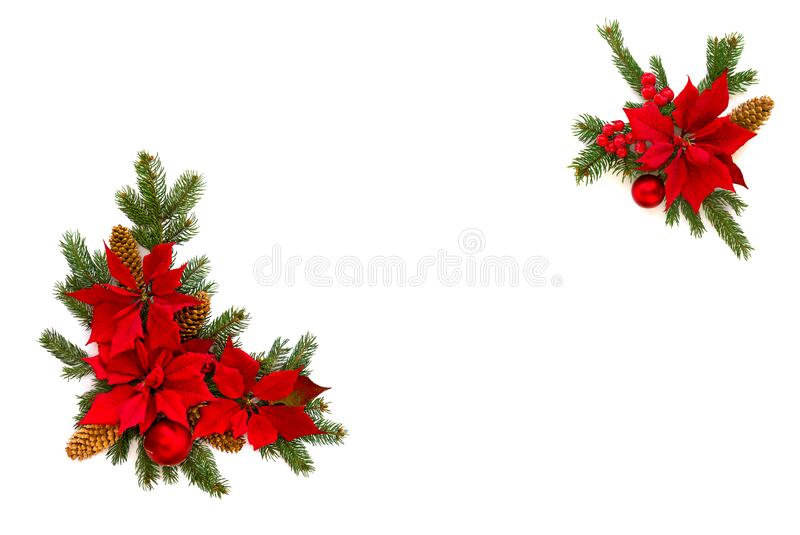 27 537 Berry Branch Christmas Red Photos Free Royalty Free Stock Photos From Dreamstime