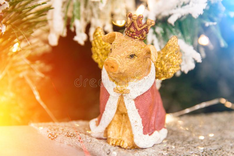 Christmas decoration golden yellow pig in the crown close up. Christmas, new year decoration golden yellow pig in the crown statuette, figurine close up stock photo