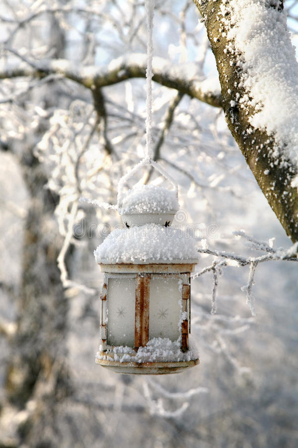 Christmas decoration with lantern, snow and fir tree branch. stock photo