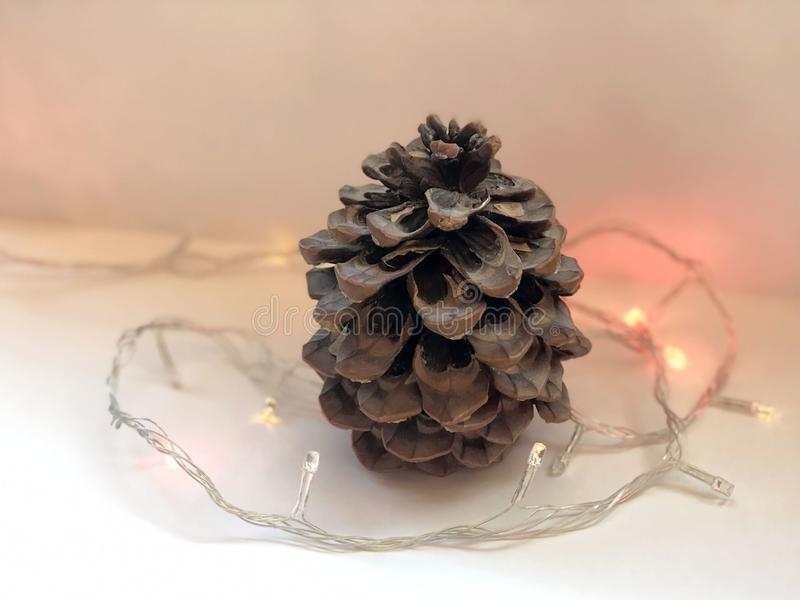 Christmas decoration with pine cones and led christmas lights on white background. Copy space. Christmas concept stock photo