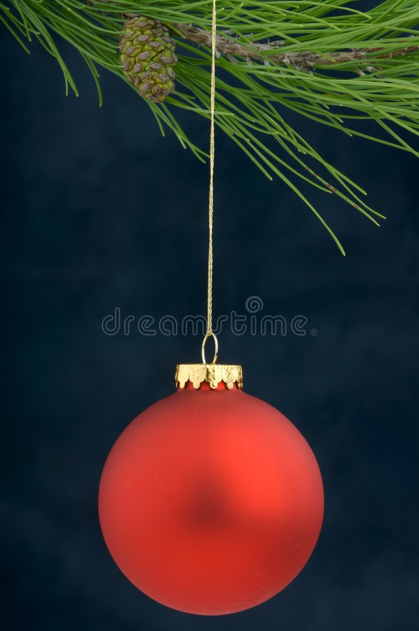 Christmas Decoration On A Tree Royalty Free Stock Images