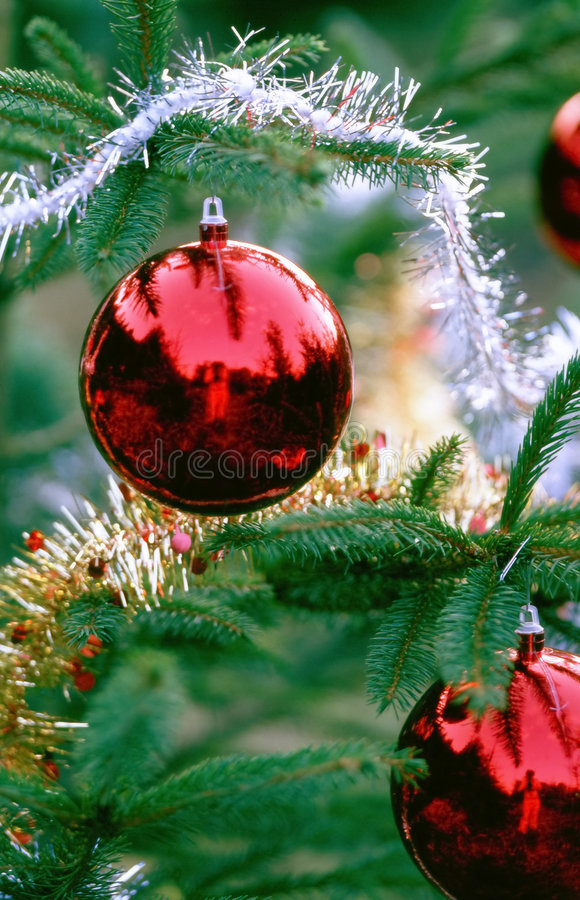 Free Christmas Decorations Royalty Free Stock Photos - 32008