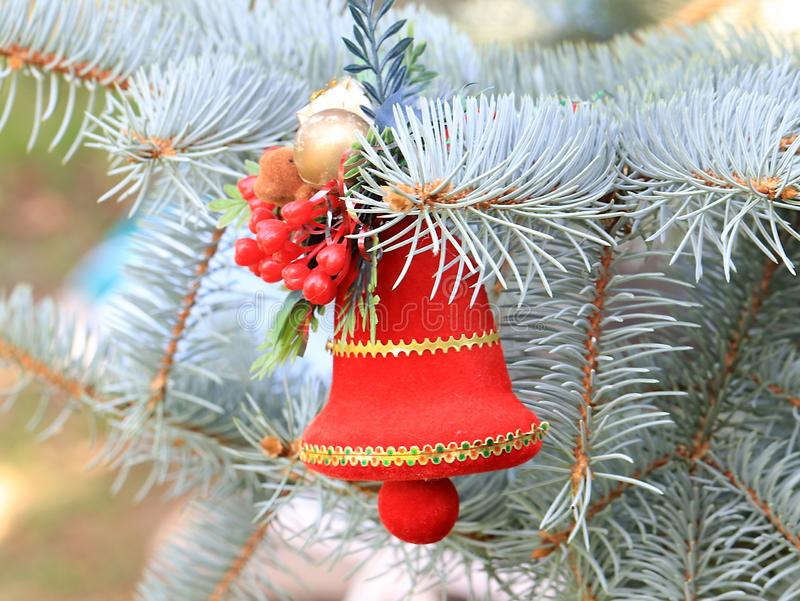 Christmas decorations in anticipation of the event. Christmas decorations on the branches of a beautiful live spruce in anticipation of the event stock photo