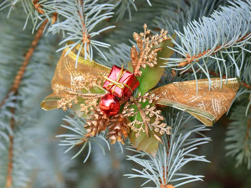 Christmas decorations in anticipation of the event. Christmas decorations on the branches of a beautiful live spruce in anticipation of the event royalty free stock photo