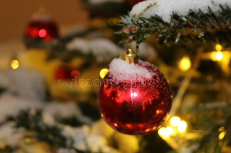 Christmas decorations on the Christmas tree in red and gold colors strewn with lights, close-up. stock image