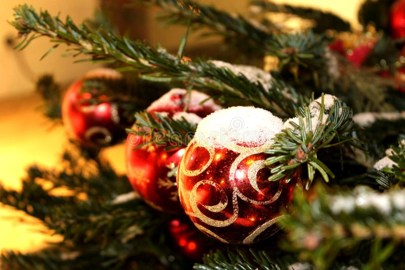 Christmas decorations on the Christmas tree in red and gold colors strewn with lights, close-up. stock images