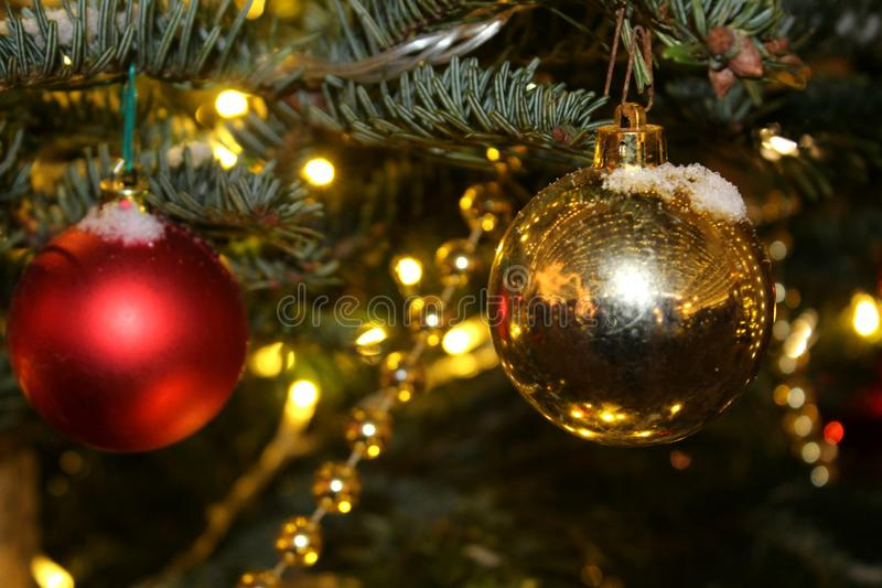 Christmas decorations on the Christmas tree in red and gold colors strewn with lights, close-up. royalty free stock photography