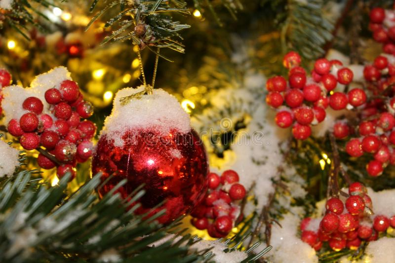 Christmas decorations on the Christmas tree in red and gold colors strewn with lights, close-up. stock photo