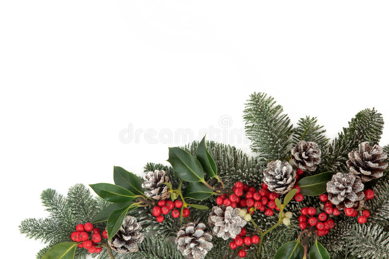 Christmas Decorative Border. Winter and christmas floral background border with snow, holly, ivy, mistletoe and pine cones over white with copy space royalty free stock image