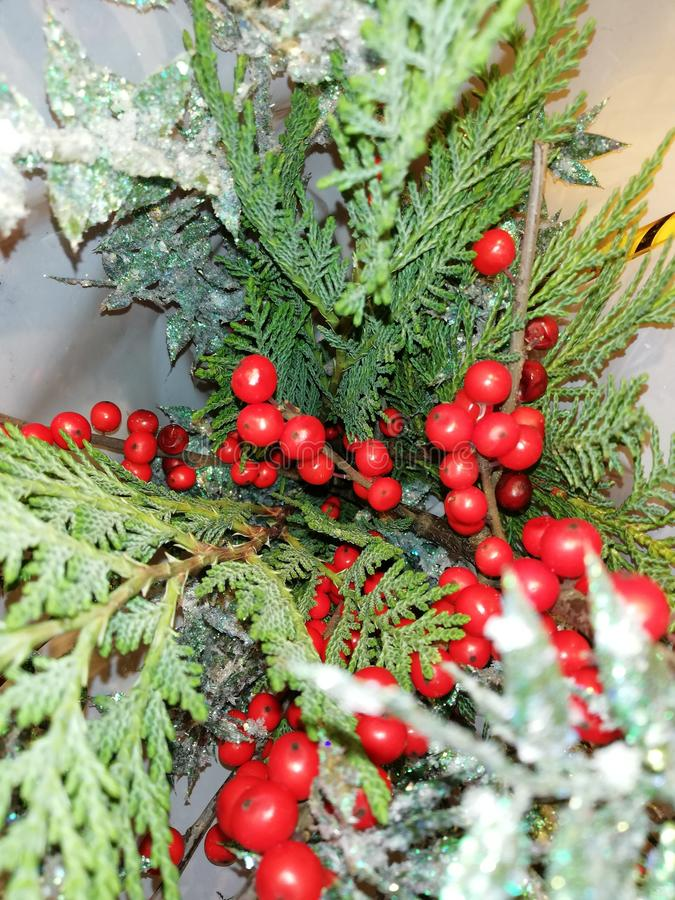 Christmas decorative Ornate Fir Glitter natural gifts stock images