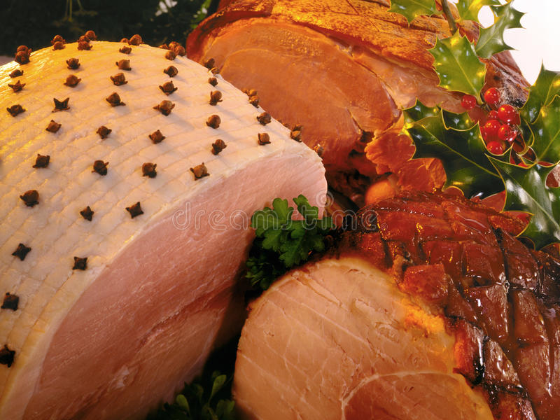 Download Christmas Dinner stock photo. Image of dinner, cooked - 17180450