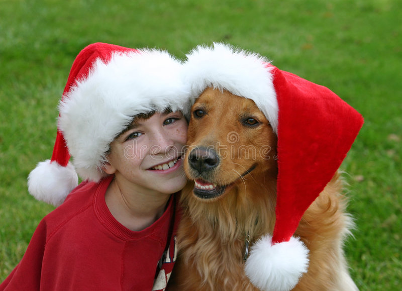 Christmas with the Dog. Boy and golden retriever wearing christmas hats stock image