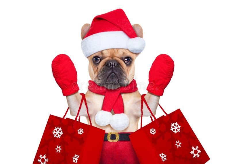 Christmas dog shopping. Santa claus christmas dog isolated on white background, waving hands, and shopping on sale stock photo