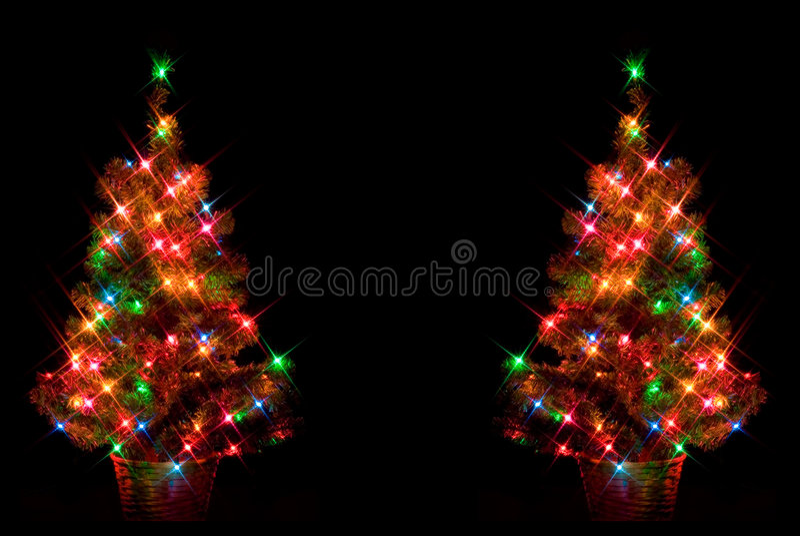 christmas dual trees στοκ εικόνες