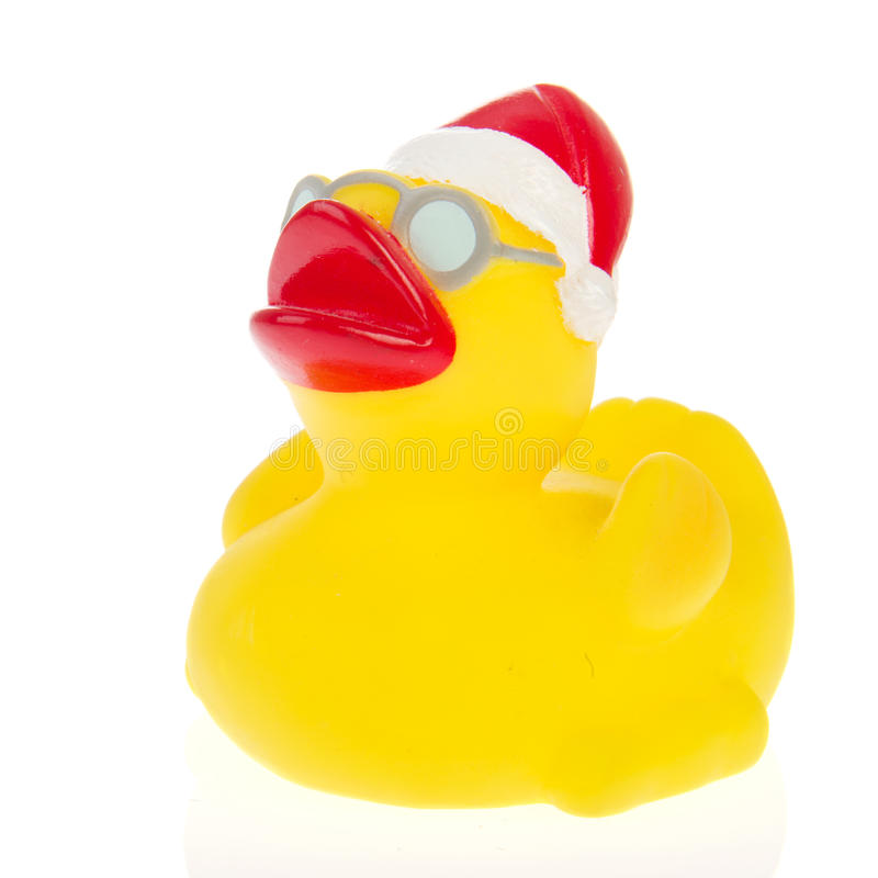 Download Christmas duck stock photo. Image of glasses, duck, christmas - 19635700