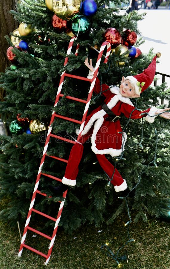 A Christmas Elf royalty free stock photography