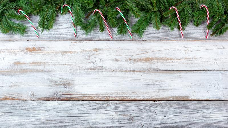 Christmas evergreen branches and candy canes on white vintage wooden planks royalty free stock photography