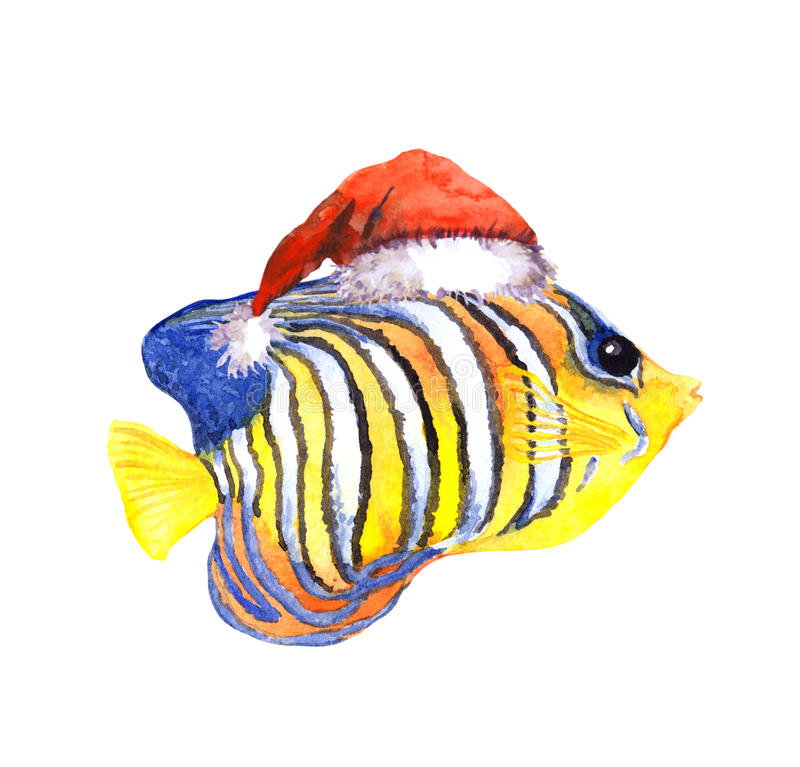 Christmas exotic tropical fish, red santa's hat. Water colour stock illustration