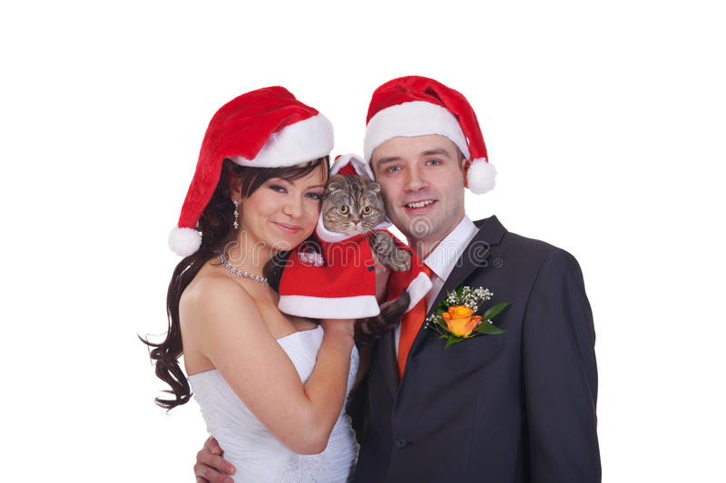 Christmas family. Newlyweds and scottish fold in red caps stock image