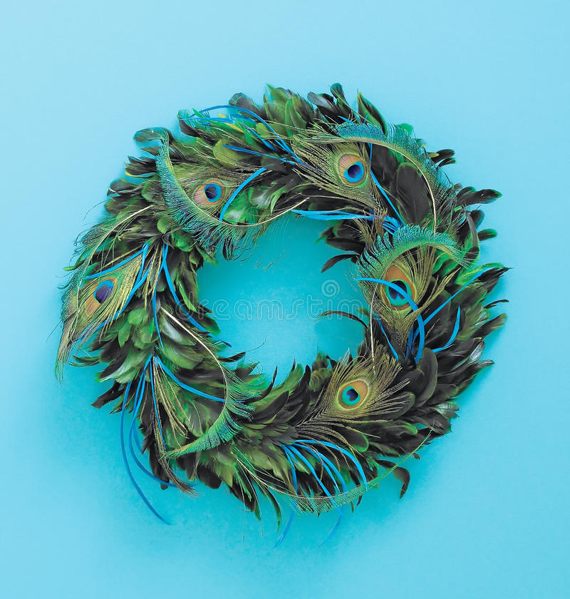 Download Christmas feathered wreath stock image. Image of nature - 11749021