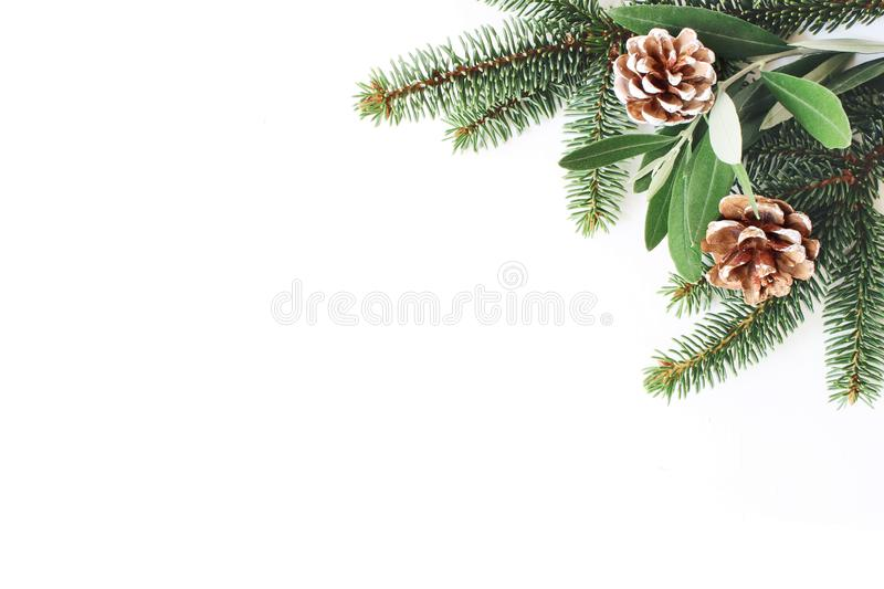Christmas festive styled stock composition. Decorative corner. Pine cones, Fir and olive tree leaves and branches white royalty free stock photos