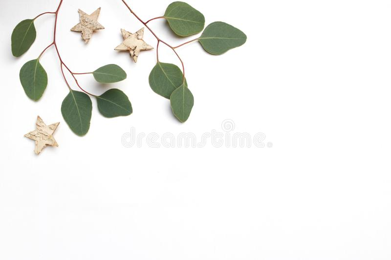 Christmas festive styled stock image. Floral frame composition made of eucalyptus leaves, branches and birch wooden royalty free stock photos