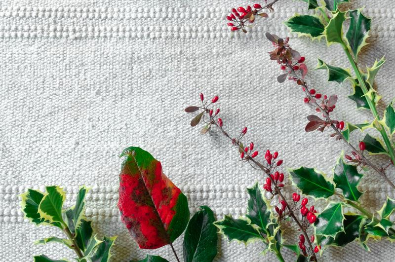 Christmas festive table New Year white pink red green berry cornel dogwood branch canvas background copy space stock photography