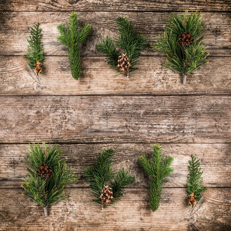 Christmas fir branch, spruce, juniper, fir, larch, pine cones on wooden background. royalty free stock images