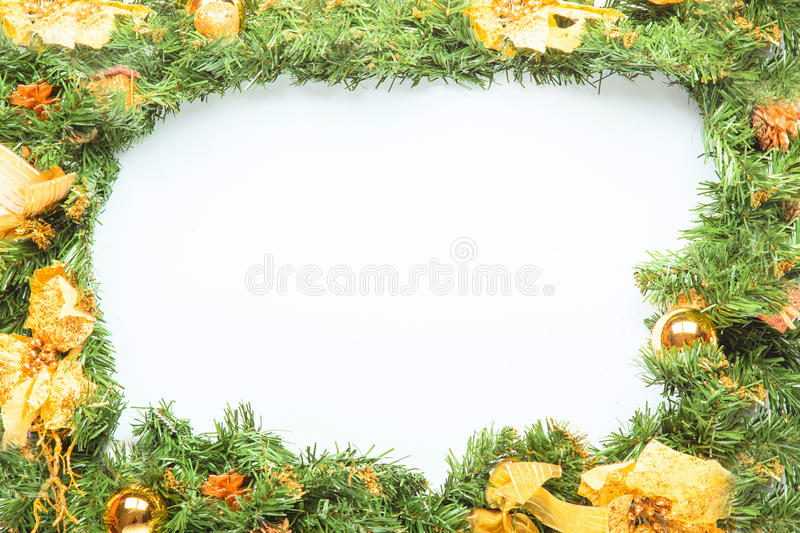 Christmas fir tree branch royalty free stock photo