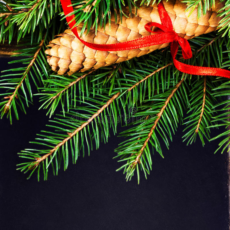 Christmas Fir Tree Branch With Pine Cone On Vintage Slate Chalk Royalty Free Stock Photos