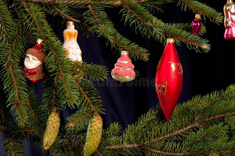 Christmas Fir Tree Stock Photo