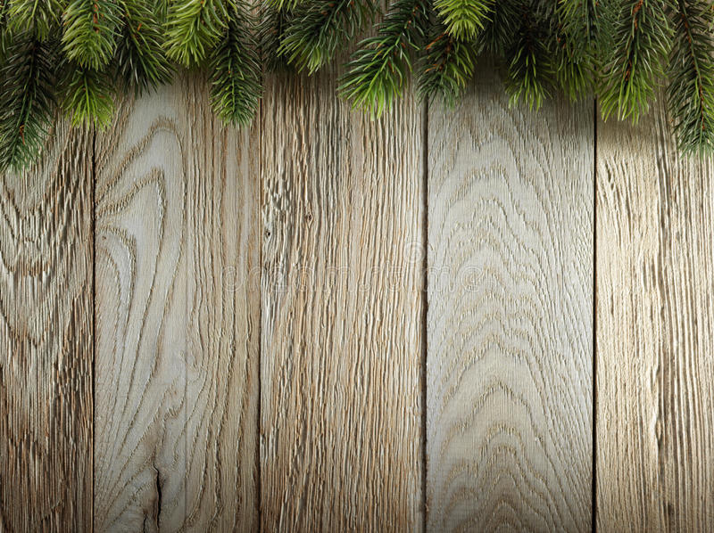 Christmas fir tree on wood texture. background old panels royalty free stock photo